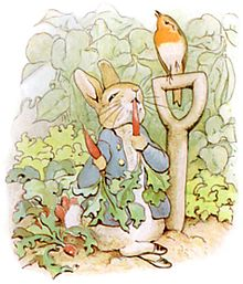 FS2 Peter Rabbit's Garden